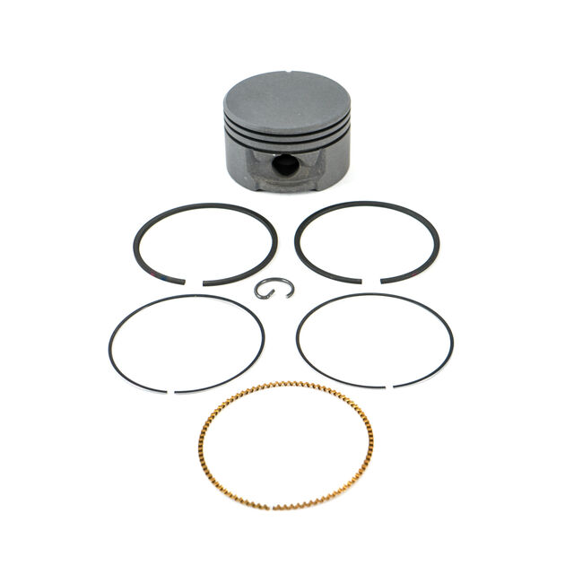 Rings and Piston Assembly Std