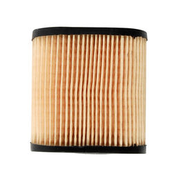 Tecumseh Part Number 36905. Air Filter